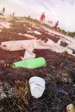O plástico engarrafa a poluição e as algas em Sandy Caribbean Beach imagem de stock royalty free