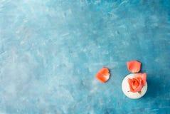 O plano da vista superior coloca a rosa do rosa no vaso branco com as pétalas no fundo azul vibrante Imagens de Stock Royalty Free