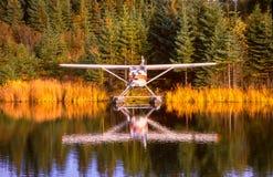 O plano do flutuador de Alaska amarrou na doca entre reflexões da folha fotos de stock