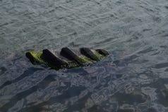 o pneu Musgo-coberto do trator na água e polui o ambiente imagem de stock