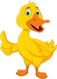 O polegar engraçado dos desenhos animados do pato acima para você projeta Imagens de Stock