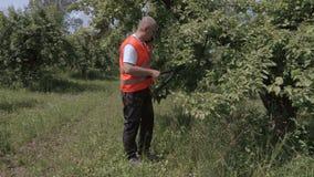 O pomar com jardineiro scissors a fala no telefone perto da árvore de maçã video estoque