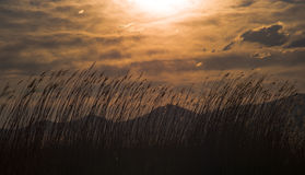 O por do sol é muito diferente Foto de Stock