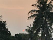 O por do sol Fotografia de Stock