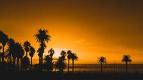 O por do sol, acampamentos late, Cape Town, África do Sul fotografia de stock royalty free