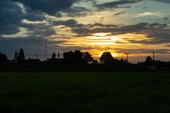 O por do sol atrás dos campos e das árvores de almofada Imagens de Stock