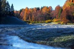O por do sol do outono foi criado nas madeiras do parque de Pavlovsk situadas no por do sol de St Petersburg Rússia pouco antes Imagens de Stock Royalty Free