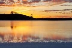 O por do sol dourado com árvore mostra em silhueta reflexões borradas da água Imagem de Stock Royalty Free