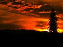 O por do sol Palmira Colombia e aprecia fotos de stock royalty free