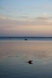 O por do sol sobre a baía Imagem de Stock