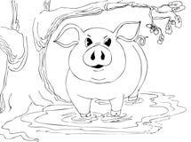 O porco grande está estando na lama perto do carvalho fotografia de stock