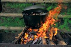 O potenciômetro no fogo com os cogumelos na floresta Fotos de Stock