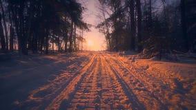 O Pov disparou na passagem lentamente móvel no trajeto do campo cercado pelo por do sol de surpresa da floresta do inverno vídeos de arquivo