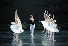 O príncipe à procura da cisne branca de seu amor-bailado O Lago das Cisnes fotografia de stock