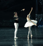 O príncipe à queda bonita da cisne no amor no primeiro vista-bailado O Lago das Cisnes Imagem de Stock