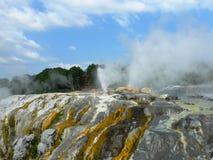 O príncipe de Gales empluma-se a mola térmica que entra em erupção em Rotorua, Nova Zelândia imagem de stock royalty free