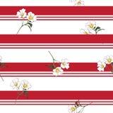 O prado de florescência do verão floresce no teste padrão sem emenda da listra do recurso ilustração royalty free
