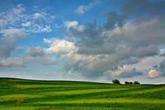O prado encontra o céu fotos de stock royalty free
