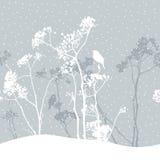 O prado no inverno Imagem de Stock