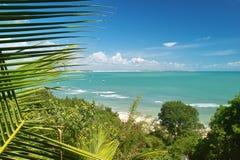 O Praia faz o pipa Fotos de Stock Royalty Free