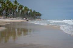 O Praia faz Paiva, Pernambuco - Brasil Fotos de Stock Royalty Free