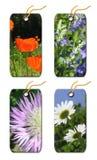 O presente etiqueta flores dos whis Fotos de Stock