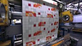 O processo de produzir o papel de parede, impress?o no papel de parede, transporte na f?brica para a produ??o de papel de parede vídeos de arquivo