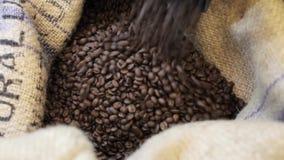 O processo derrama fora dos grãos de café fritados no saco na fábrica video estoque