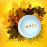 O projeto de cartão sazonal do outono à moda com efeito do bokeh, as folhas de bordo e um 3d contrastam a caixa de texto Fotografia de Stock