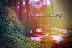 O projeto gráfico exprime a rotulação sobre uma textura borrada natureza do fundo fotos de stock