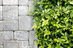 O projeto novo da parede moderna Foto de Stock Royalty Free