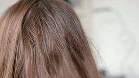 O pulverizador do cabeleireiro do close-up no cabelo reto molhado da mulher no salão de beleza vídeos de arquivo