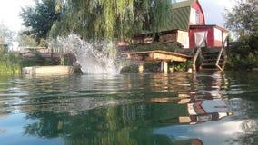 O pulverizador do lago Imagens de Stock Royalty Free