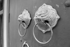 O punho do laço é cabeça do leão na porta de madeira imagens de stock