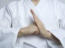 O punho na palma das artes marciais da mão respeita o lai ging Imagem de Stock Royalty Free