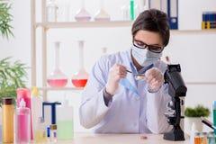 O químico do laboratório que verifica produtos da beleza e de composição imagem de stock royalty free