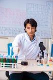 O químico novo que trabalha no laboratório fotografia de stock