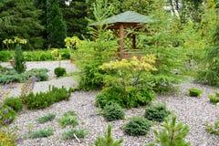 O quadrado com as plantas coníferas novas e um mandril fotos de stock
