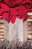 O quadro arranjou das flores e dos galhos da poinsétia com madeira da tração Fotos de Stock Royalty Free