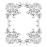 O quadro com esboço rabisca elementos decorativos Fotos de Stock Royalty Free