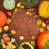 O quadro da ação de graças dos vegetais, do girassol, da maçã e da queda sae na configuração de madeira do plano do fundo, vista  Fotos de Stock Royalty Free