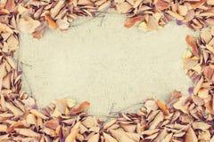 O quadro da beira caído sae na textura do pavimento Foto de Stock