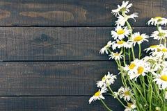 O quadro da camomila floresce no fundo de madeira rústico escuro com Fotografia de Stock