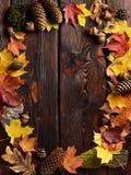 O quadro das folhas de outono no fundo de madeira com espaço da cópia Fotos de Stock Royalty Free