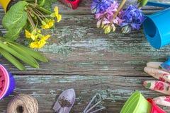 O quadro de jardinagem da mola com mola floresce em uns potenciômetros e na jardinagem Fotos de Stock