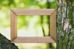 O quadro de madeira contra um verde borrou o fundo natural Espaço vazio para o texto Conexão com o conceito da natureza imagem de stock royalty free