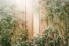 O quadro floral bonito com os lírios do vale floresce em velho Imagem de Stock Royalty Free