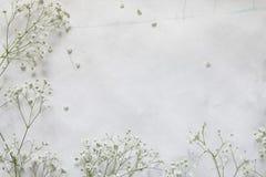 O quadro floral com Gipsofila floresce no fundo do papel do vintage Fotos de Stock