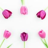 O quadro floral com tulipa cor-de-rosa floresce no fundo branco Configuração lisa Vista superior Fundo do dia de Valentim Foto de Stock Royalty Free