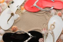 O quadro luxuoso feito de falhanços de aleta, o shell e a estrela do mar na areia encalham foto de stock